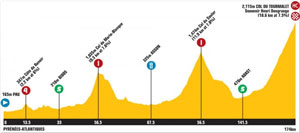 TDF stage 17 profile