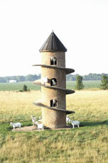 goat tower!