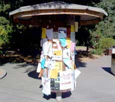local kiosk with flyers