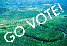 vote for the environment!