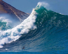 wave of the week: awesome!