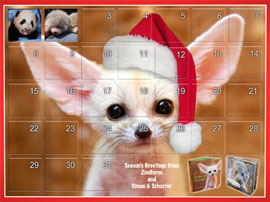 ZooBorns Holiday Calendar!