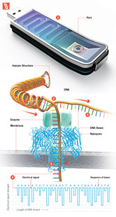 fastest DNA sequencer, on USB